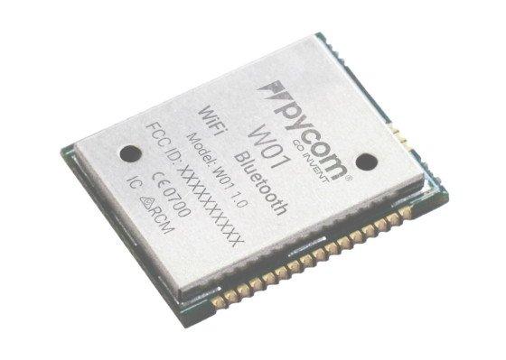 PyCom W01